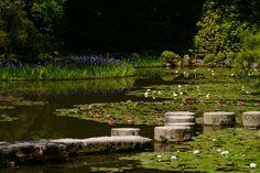Garden of Heian Jingu Shrine - null