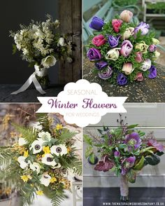 Why you should choose seasonal blooms for your winter wedding – in support of British Flowers Week 2015 Winter Wedding Flowers, Winter Weddings, February Wedding, Flower Images, Flower Ideas, British Flowers, Wedding Company, Flower Farm, Wedding Bouquets