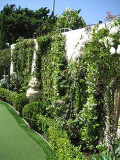 French+Garden+Design | Payne05-21-20101YearLater027