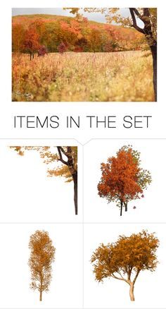 """""""Nadine Imagined a Blazing Autumn Scene Providing the Backdrop…""""If You Want it in the Fall, Nadine…That Means Waiting A Whole Year""""…""""No, Lewis…This Fall…Next Month…In Fred's Field... & Do the Reception in the Barn…I Just Need to Find a Dress!"""""""" by maggie-johnston ❤ liked on Polyvore featuring art"""