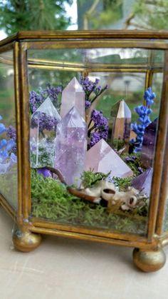 Terrarium – Healing Crystals – Terrarium Kit – Glass Terrarium – Crystal Garden – Gypsy – Metaphysical – Raw Crystals and Stones – Top Trend – Decor – Life Style