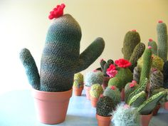 plants2_gerard.jpg