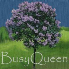 GIF eBlueJay: Purple Lilac Tree bush shrub 2 feet tall Free Shipping❤☀•✿•❤•✿•❤•❀