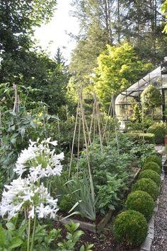 Lovely small garden design accommodates both vegetables & flowers.  #GardenDesign