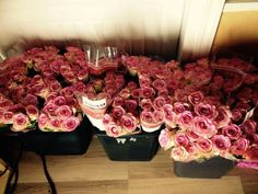 200 vaaleanpunaista ruusua