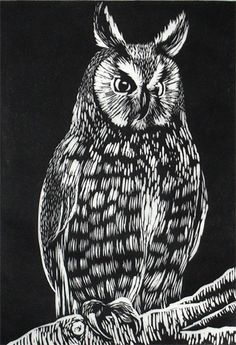 Owl - linocut print - Rowanne Anderson, U.K.
