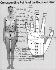Koryo - front of hand  http://trittwellness.com/korean_hand_therapy/