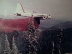 P2V-7 converted to an aerial firefighting aircraft by Black Hills Aviation, Inc. originally from Spearfish,  SD, then later based out of  Alamogordo, NM.   The small white dot in the sky above the aircraft and the tip of the pine tree is the Forest Service lead plane..  Arnold Kolb is the brave and undefeated pilot on this mission.