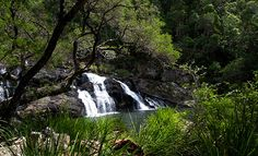 Waterfalls - Booloumba Falls - 5 waterfalls you can swim in near Brisbane