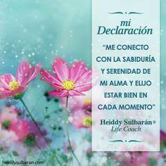 #elconsejodehoy #declaracióndelasemana Para mantener la serenidad y estar bien en todo momento. #LifeCoachingHS @HeiddySulbaran