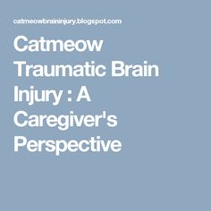 Catmeow Traumatic Brain Injury : A Caregiver's Perspective