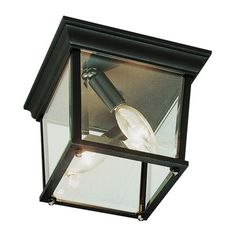 TransGlobe Lighting Outdoor 2 Light Flush Mount & Reviews | Wayfair