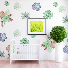 Fiona Succulent Wall