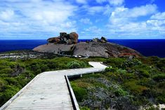 Kangaroo Island Tours from Adelaide offers Flinders Chase NP, The Remarkable Rocks, Return Ferry and lunch. Book Adelaide to Kangaroo Island Day Tours! Adelaide South Australia, Australia Tours, Australia Day, Visit Australia, Coach Tours, Kangaroo Island, Stay Overnight, Island Tour, Day Tours