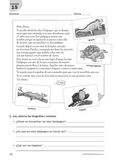 #ClippedOnIssuu from refuerzo lengua cuarto Spanish Worksheets, First Grade Worksheets, Reading Practice, Spanish Classroom, Spanish Language, Learning Spanish, Reading Comprehension, Author, Teaching
