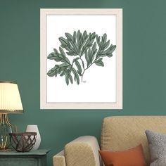 Seaweed illustration, seaweed print, nautical decor, nautical art, botanical print, coastal decor, green decorating  - Seaweed 4 green