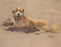 Cecil Aldin A Dozen Dogs or So Photo Print Number #2 of 13 buy 3 get 1 Free