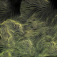 Perlin noise vector field