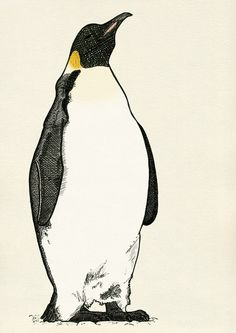 Emperor Penguin Art Print by Electric Egg - Illustration | Society6