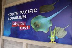 Green Guy at @Point Defiance Zoo. Where do you think Green Guy should go next?