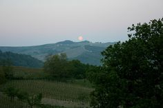 Sunset Oltrepo by duepadroni, via Flickr
