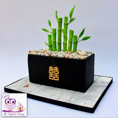 Lucky Bamboo, Planter Pots, Container, Cakes, Cake Makers, Kuchen, Cake, Pastries, Cookies