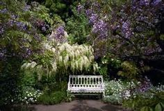 english gardens.4