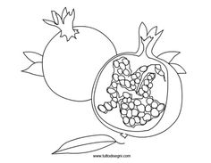 melograna-frutto Pomegranate Drawing, Coloring Books, Coloring Pages, Floral Illustrations, Kids Learning, Decoupage, Pokemon, Arts And Crafts, Quilts