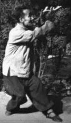 Liu Feng Cai. Gao style baguazhang.