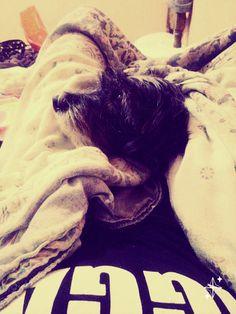Frio e chuva ' ótima companhia ♡ #dog #fofo #cute #cachorro #animais #cold #care #animals