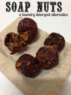 Soap Nuts {say what?} My daughter uses them and loves them!  Gammy/Tammy