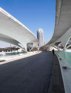 city-of-arts-and-science-in-valencia-spain-designed-by-the-architect-santiago-calatrava_ciudad-artes-y-ciencias-2