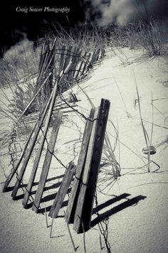 Fine Art Photography - Sleeping Bear Sand Dune Fence - x metallic photograph Beach Pics, Beach Art, Beach Pictures, Old Fences, What To Draw, Beach Themes, Ecology, Dune, Fine Art Photography