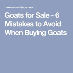 Goats for Sale - 6 Mistakes to Avoid When Buying Goats