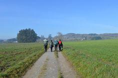 Te organizamos hasta el último detalle del #CaminodeSantiago durante todo el año. Más info en www.experienciasdeportivas.com.