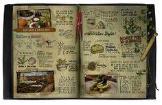 Illustrations for Jamie Oliver -MERLE GOLL
