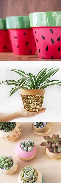 Clever potted plant ideas, from succulent garden DIYs to cute and crafty pot designs, we've got you covered.