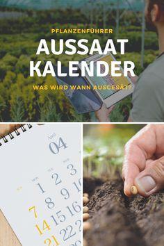 Jeden Frühling dürfen wir uns erneut auf die Aussaat im Garten freuen! Der Aussaatkalender für Gemüse und Kräuter unterstützt dich beim Säen und Ernten deiner Pflanzen. Der Kalender zeigt dir, wann welche Arten am besten gesät und vorgezogen werden. #ausssaat #aussaatkalender #jahresplanung #garten #gemüse #gemüsebeet #kräuter #planung #salat #tipps #monat #inspiration #balkon #gewächshaus #beet #gärtnern Monat, Cover, Books, Inspiration, Green Lawn, Balcony, Plants, Tips, Biblical Inspiration