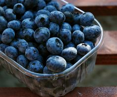 Fresh blueberries would be amazing right now.