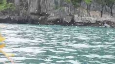 Underground River Cute Gif, Places To Visit, River, World, Videos, Youtube, Outdoor, Outdoors, The World