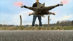 Artist turns the body of his dead cat Orville into the Orville-copter, a radio-controlled flying cat/horrifying hybrid.