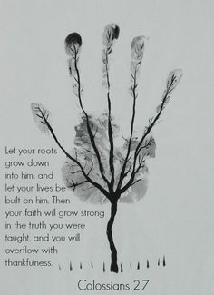 simply-divine-creation: Colossians 2:7 Let your roots grow down into Him, and let your lives be built on Him. Then...