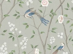 Paradise Birds by Boråstapeter - Green : Wallpaper Direct Bird Wallpaper, Purple Wallpaper, Wallpaper Samples, Pattern Wallpaper, Paradise Wallpaper, Chinoiserie Wallpaper, Oriental, Red Colour Palette, Boutique Deco