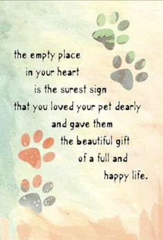 Sympathy Cards for Pets Pet Sympathy Quotes, Pet Sympathy Cards, Sympathy Verses, Condolences Quotes, Pet Loss Quotes, Dog Quotes, Child Quotes, Love Your Pet, Dog Love