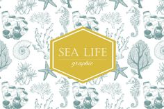 """Graphic set of """"Sea Life"""" by Lembrik's Artworks on @creativemarket"""