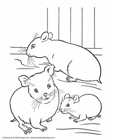 Pet coloring page | a family of hamsters in a cage