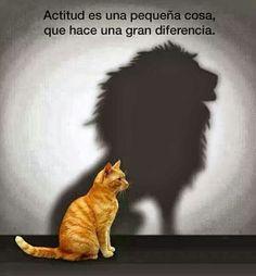 Actitud.