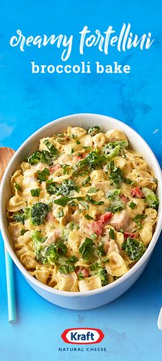 Creamy Tortellini Broccoli Bake – Starting with cheesy stuffed pasta, add in alfredo sauce, chicken, broccoli, and red peppers to create your new favorite dinnertime dish. Check out this recipe to enjoy this cheesy creation for yourself. Casserole Dishes, Casserole Recipes, Pasta Recipes, Breakfast Casserole, Chicken Recipes, Dinner Recipes, Cooking Recipes, Tortellini Recipes, Kraft Recipes