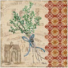 Thyme - Herb