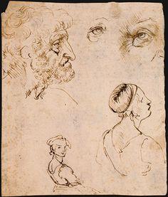 Leonardo da Vinci - Sheet of Studies